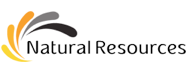 Dibetou (Tigerwood, Noyer D'Afrique) Entreprises - Natural Resources LTD