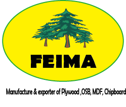 Balsa Entreprises - Qingdao Feima international trading co.,ltd